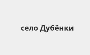 Справочная информация: Банкоматы Банка ВТБ в селе Дубёнки — часы работы и адреса терминалов на карте